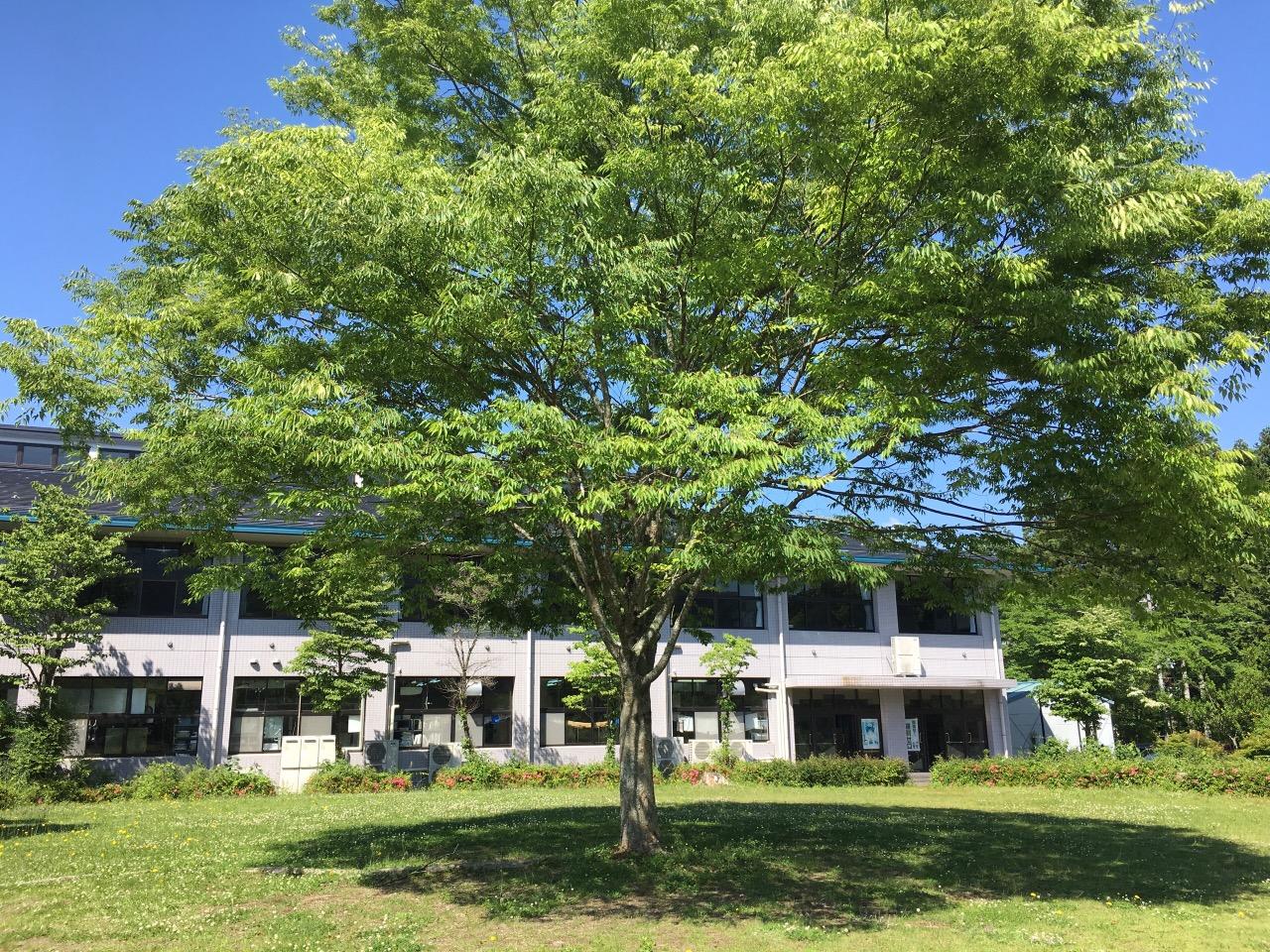 福知山淑徳高等学校画像